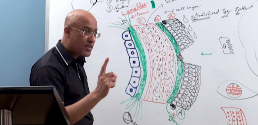 dr najeeb lectures login password