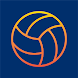 Volleyball Scout