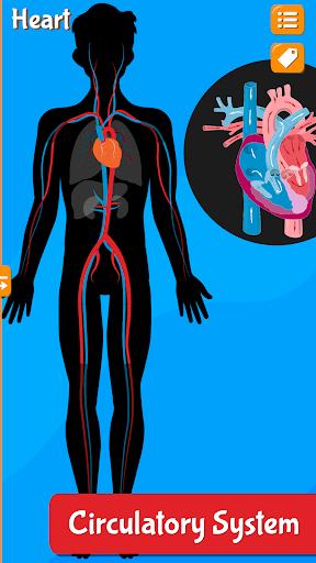 Anatomix - Human Anatomy screenshots 6