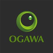 OgawaAI Master Drive