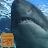 Télécharger fond d'écran de requin affamé APK pour Windows