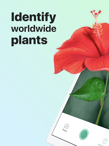 PictureThis: Identify Plant, Flower, Weed and More 2.7.1 Screenshots 1