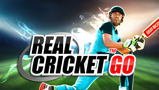 Real Cricket™ GO 1