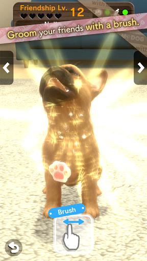 with My DOG  screenshots 3
