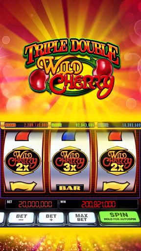 Double Rich Slots - Free Vegas Classic Casino 1.6.0 screenshots 8