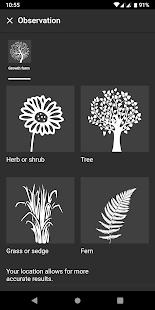 Flora Incognita - automated plant identification 2.9.9 Screenshots 2