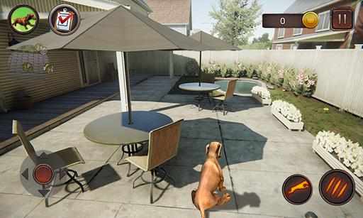 Dachshund Dog Simulator  screenshots 1