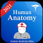 Human Anatomy Atlas - Anatomy Learning 2021