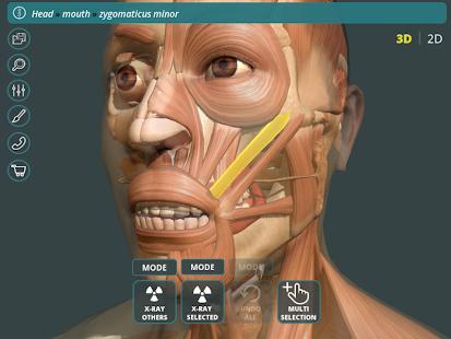 Visual Anatomy 3D | Human 1.2 Screenshots 8