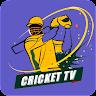Live Cricket TV Streaming HD APK Icon