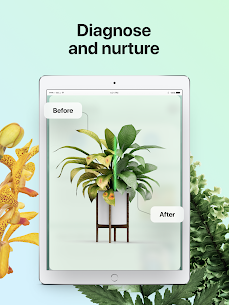 PictureThis: Identify Plant MOD APK 3.0.1 (Gold Unlocked) Flower, Weed and More 12