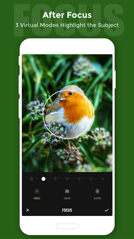 Fotor Photo Editor - Photo Collage & Photo Effects  poster 4
