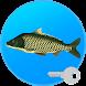 Реальная Рыбалка (ключ). Симулятор рыбной ловли.