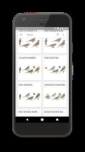 Collins Bird Guide 2