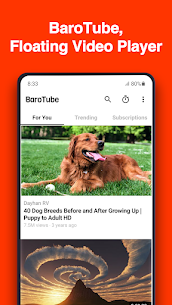 BaroTube for PC 1