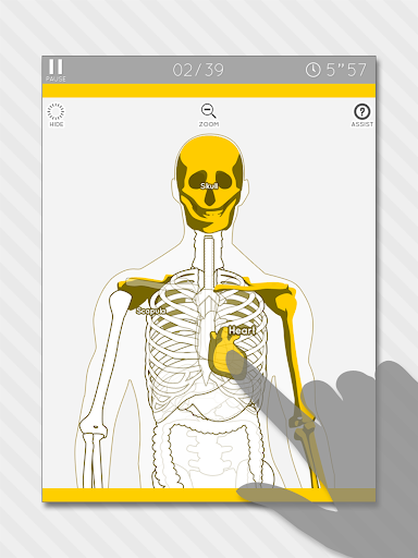 Enjoy Learning Anatomy puzzle 3.2.3 screenshots 6
