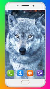 Wolf Wallpaper HD