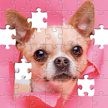Jigsaw Puzzles for Adults HD APK