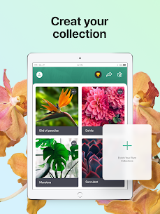PictureThis: Identify Plant MOD APK 3.0.1 (Gold Unlocked) Flower, Weed and More 14