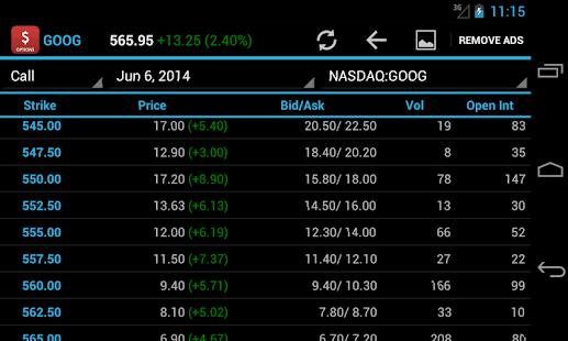 Stock Option Quotes