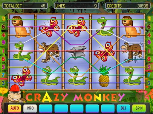 Crazy Monkey Deluxe 8.3 Screenshots 5