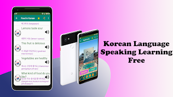Korean Language Learning App Offline in English