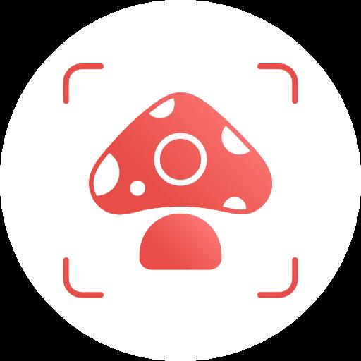 Picture Mushroom - Mushroom ID