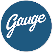 Gauge Research