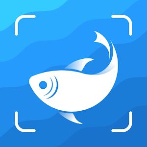 Picture Fish  Fish Identifier