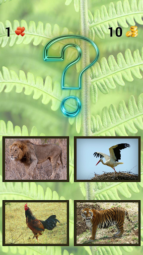 ud83dudc37 Zoo sounds quiz ud83dudc37 android2mod screenshots 4