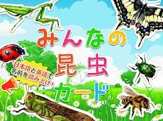 昆虫カード 子供向け図鑑 教育・知育・英語のおすすめ画像1