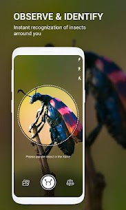 Insect identifier App by Photo, Camera Mod Apk (Subscription Activated) 1