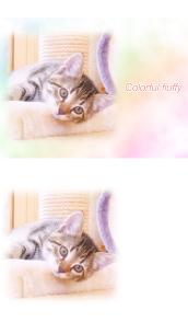 WataameCameraSoft Photo Editor Like For Pc | How To Download – (Windows 7, 8, 10, Mac) 1