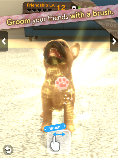 with My DOG  screenshots 11