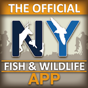NY Fishing, Hunting & Wildlife
