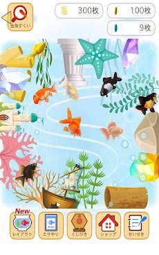 金魚すくい(お祭)のおすすめ画像5