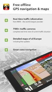 Dynavix Navigation, Traffic Information & Cameras 1