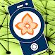 Flora Incognita - automated plant identification