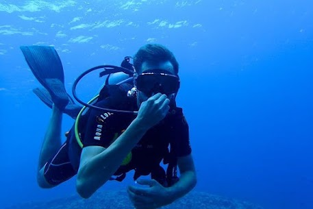 Scuba Diving Live Wallpapers For Pc | How To Install (Windows 7, 8, 10 And Mac) 2