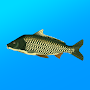 True Fishing icon