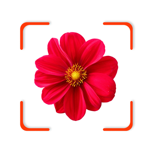 FindPlant - New Plant identification