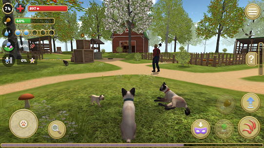 Cat Simulator 2020 for PC Free Download on Windows and Mac 1