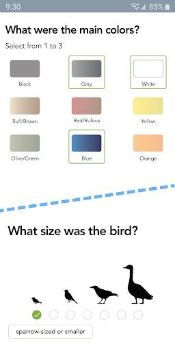 Merlin Bird ID by Cornell Lab screenshot 2