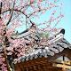 Korea Beautiful Place WallPaper 4K 2021 para PC Windows