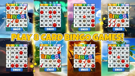 Bingo  Play Free For Pc | How To Download – (Windows 7, 8, 10, Mac) 1