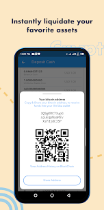 Bitsika – Send and Spend 4