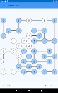 Hashi Puzzle