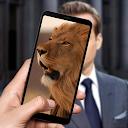 Animal Look Like – Which Animal Do You Look Like