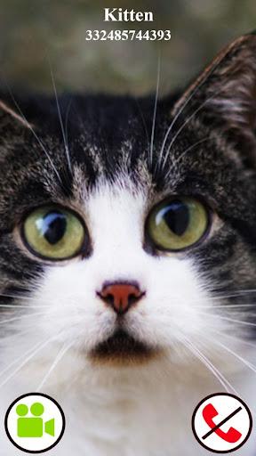 fake call video cat game  screenshots 3