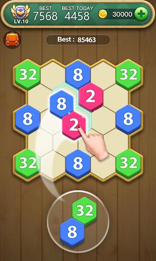 Hexa Block Puzzle  screenshots 1